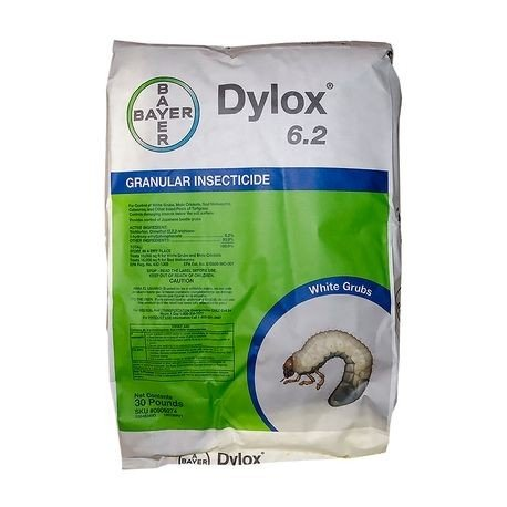 0003123_dylox-62-granular-insecticide-bayer[1]