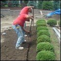 edgings-lawn-installation-2-e1433779816365[1]
