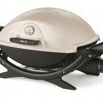 grills-Weber-Q-220[1]
