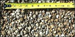 stone-5-8-pea-gravel